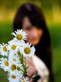τεντώματα κοριτσιών ανθοδεσμών camomiles Στοκ εικόνα με δικαίωμα ελεύθερης χρήσης