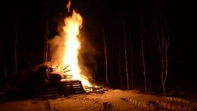 Τεράστια ξύλινη πυρκαγιά στη χειμερινή νύχτα φιλμ μικρού μήκους