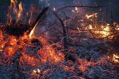 Τεράστια φωτιά τη νύχτα Στοκ εικόνα με δικαίωμα ελεύθερης χρήσης