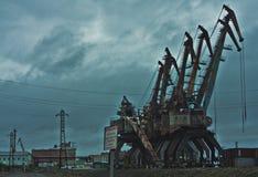 Τεράστιοι γερανοί στοκ φωτογραφίες