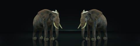 Τεράστιος ελέφαντας στο σκοτεινό υπόβαθρο απεικόνιση αποθεμάτων