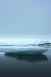 Τεράστιος επιπλέων πάγος πάγου στοκ φωτογραφίες με δικαίωμα ελεύθερης χρήσης