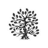 Τεράστιο και ιερό δρύινο διακριτικό λογότυπων σκιαγραφιών δέντρων που απομονώνεται στο άσπρο υπόβαθρο Στοκ Εικόνα