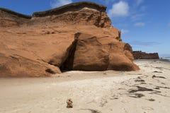 Τεριέ του Γιορκσάιρ που στέκεται μόνο σε μια εγκαταλειμμένη παραλία με τον κόκκινο απότομο βράχο στοκ φωτογραφία με δικαίωμα ελεύθερης χρήσης