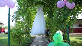 Τεριέ του Γιορκσάιρ στο νεόνυμφο νυφών ` s και το γαμήλιο φόρεμα απόθεμα βίντεο