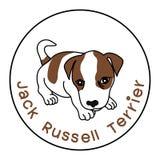 τεριέ του Russell γρύλων Στοκ Εικόνες