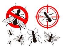 Τερμίτης, μυρμήγκι εικονίδια ελέγχου παρασίτων καθορισμένα επίσης corel σύρετε το διάνυσμα απεικόνισης Στοκ Εικόνες