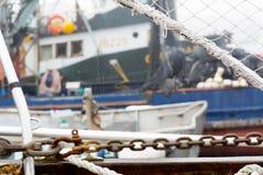 Τερματικό ψαράδων ` s Άποψη του Ιστού αραχνών Στοκ Φωτογραφία
