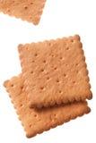 τετράγωνο μπισκότων Στοκ Εικόνες