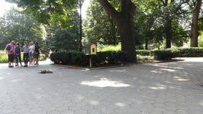 Τετράγωνο Stuyvesant φιλμ μικρού μήκους