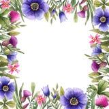 Τετραγωνικά σύνορα των λουλουδιών λιβαδιών στοκ εικόνα