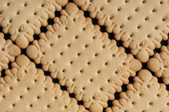 Τετραγωνικές κροτίδες μπισκότων Στοκ Εικόνες