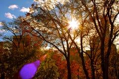 Τετραγωνικό πάρκο της Ουάσιγκτον, πόλη της Νέας Υόρκης Στοκ φωτογραφίες με δικαίωμα ελεύθερης χρήσης