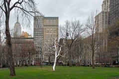 Τετραγωνικό πάρκο του Μάντισον - πόλη της Νέας Υόρκης στοκ φωτογραφίες