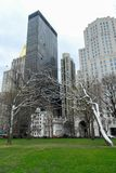 Τετραγωνικό πάρκο του Μάντισον - πόλη της Νέας Υόρκης στοκ εικόνες