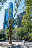 Τετραγωνικό πάρκο του Μάντισον, NYC Στοκ φωτογραφία με δικαίωμα ελεύθερης χρήσης
