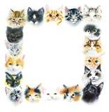 Τετραγωνικό πλαίσιο από τις εσωτερικές γάτες Συρμένη χέρι απεικόνιση Watercolor απεικόνιση αποθεμάτων