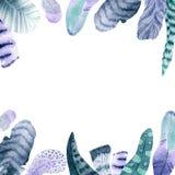 Τετραγωνικό πλαίσιο φτερών Watercolor στο άσπρο backhround ελεύθερη απεικόνιση δικαιώματος