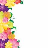 Τετραγωνικό πλαίσιο με τα λουλούδια Στοκ εικόνα με δικαίωμα ελεύθερης χρήσης