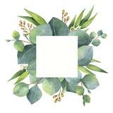 Τετραγωνικό στεφάνι Watercolor με τα φύλλα και τους κλάδους ευκαλύπτων Στοκ φωτογραφίες με δικαίωμα ελεύθερης χρήσης