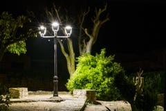 ΤΕΤΡΑΓΩΝΟ ðŸŒ τη νύχτα• τα δέντρα και τους Μπους, που φωτίζονται με από το ΦΩΤΕΙΝΟ ΣΗΜΑΤΟΔΌΤΗ ðŸ ¡ στοκ φωτογραφία με δικαίωμα ελεύθερης χρήσης