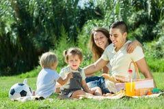 Τετραμελής οικογένεια που έχει το πικ-νίκ Στοκ εικόνες με δικαίωμα ελεύθερης χρήσης
