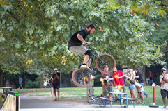 Τεχνάσματα ποδηλατών στο πάρκο σαλαχιών Στοκ φωτογραφία με δικαίωμα ελεύθερης χρήσης
