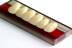 τεχνητά καθορισμένα δόντια Στοκ φωτογραφία με δικαίωμα ελεύθερης χρήσης