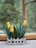Τεχνητά λουλούδια στην επεξεργασία των δοχείων σε ένα ξύλινο windowsill, ecodesign στοκ φωτογραφία με δικαίωμα ελεύθερης χρήσης