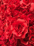 Τεχνητά τριαντάφυλλα Στοκ φωτογραφία με δικαίωμα ελεύθερης χρήσης