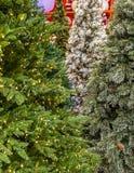 Τεχνητά χριστουγεννιάτικα δέντρα στην επίδειξη Στοκ Εικόνα
