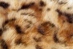 τεχνητή γούνα Στοκ εικόνες με δικαίωμα ελεύθερης χρήσης