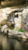 Τεχνητοί καταρράκτες στο ζωολογικό κήπο Στοκ Εικόνες