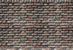 τεχνητός μπλε ελαφρύς τοίχος πετρών κόκκινο με την άσπρη ένωση Στοκ Εικόνες