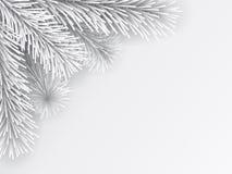Τεχνητό λευκό κλάδων χριστουγεννιάτικων δέντρων Διανυσματική απεικόνιση