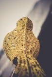 Τεχνητό χρυσό πουλί διακοσμήσεων αναδρομικό Στοκ Φωτογραφία