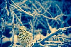 Τεχνητό χρυσό πουλί διακοσμήσεων αναδρομικό Στοκ Εικόνα