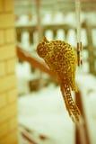 Τεχνητό χρυσό πουλί διακοσμήσεων αναδρομικό Στοκ φωτογραφία με δικαίωμα ελεύθερης χρήσης