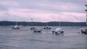 Τεχνικές προετοιμασίες των αεροσκαφών για την πτήση Αερολιμένας της Μόσχας E απόθεμα βίντεο