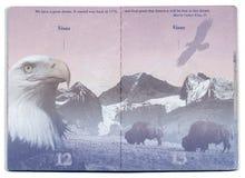 Κενή σελίδα ΑΜΕΡΙΚΑΝΙΚΩΝ διαβατηρίων Στοκ εικόνα με δικαίωμα ελεύθερης χρήσης