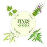 Τελειοποιεί herbes το στρογγυλό έμβλημα Στοκ Εικόνες