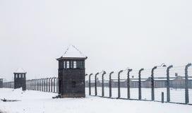 Τελετή που αφιερώνεται στη 70η επέτειο της απελευθέρωσης Ausc Στοκ εικόνες με δικαίωμα ελεύθερης χρήσης