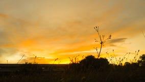 τελευταίο φως Στοκ φωτογραφία με δικαίωμα ελεύθερης χρήσης