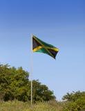 Τζαμάικα Εθνική σημαία στον πράσινο λόφο Στοκ Εικόνες