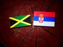 Τζαμαϊκανή σημαία με τη σερβική σημαία σε ένα κολόβωμα δέντρων που απομονώνεται Στοκ φωτογραφία με δικαίωμα ελεύθερης χρήσης