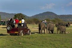 Τζιπ και ελέφαντες σαφάρι στο εθνικό πάρκο Minneriya στη Σρι Λάνκα στοκ φωτογραφία με δικαίωμα ελεύθερης χρήσης