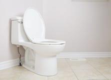 Τηγάνι και χαρτί τουαλέτας τουαλετών Στοκ Φωτογραφίες