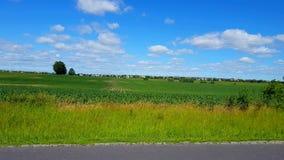 Τηγάνι καμερών του όμορφου πολύβλαστου γεωργικού αγροτικού φυλλώματος με την κυκλοφορία και των κατοικημένων σπιτιών στο απόμακρο