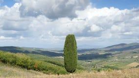 Τηγάνι Val δ ` Orcia στην επαρχία της Σιένα στην Τοσκάνη, Ιταλία στο ηλιοβασίλεμα απόθεμα βίντεο