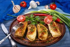 Τηγανίτες με το κρέας και τα φρέσκα λαχανικά στοκ εικόνες